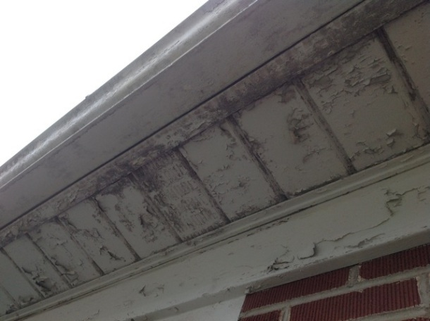 The paint was peeling from the soffit, fascia, and gutters.